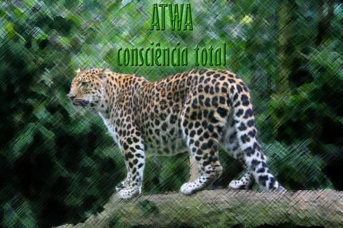 atwa_leopardo